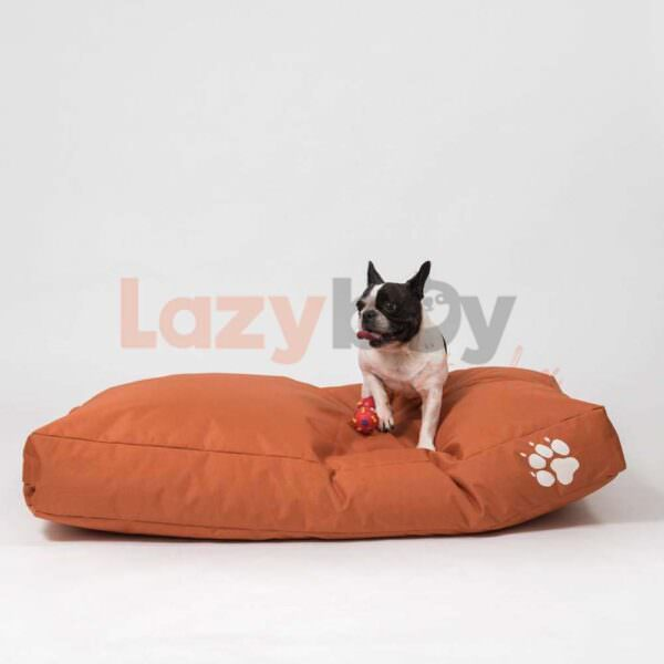 culcus caine ieftin talie mica talie mare lazyboy romania 15